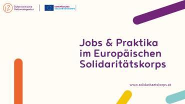 "Webinaraufzeichnung ""Jobs & Praktika im ESK"""